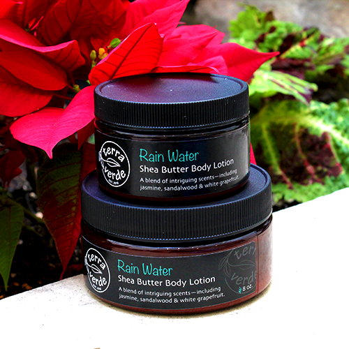 Rain Water Shea Butter Body Lotion