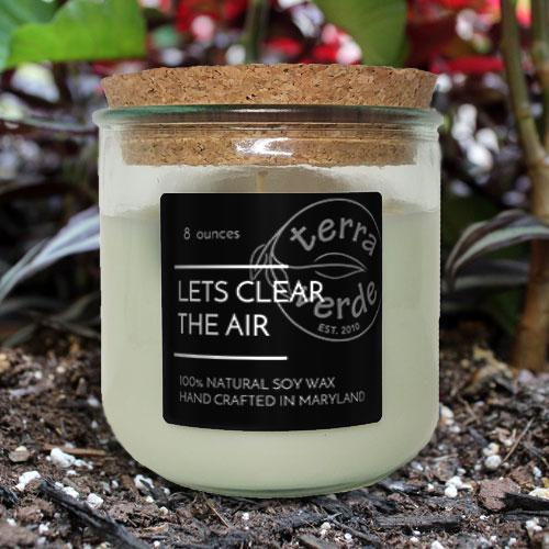 Let's Clear the Air 8oz Soy Candle - Terra Verde - Havre De Grace