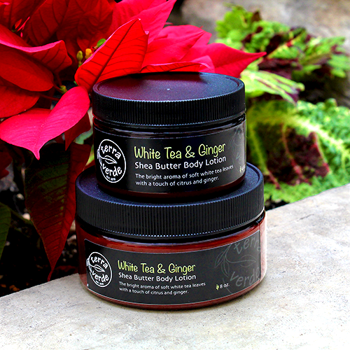 White Tea and Ginger Shea Butter Body Lotion